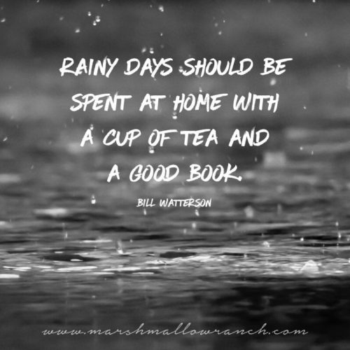 Rainy days should be spent at home with a cup of tea and a good book. Bill Watterson