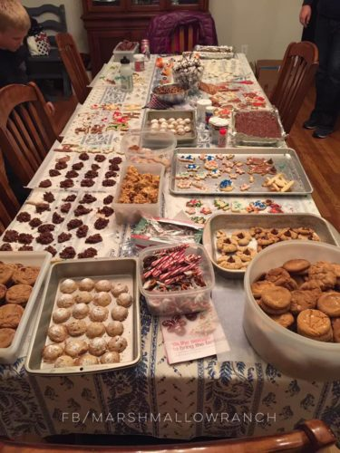Table full of Christmas cookies.