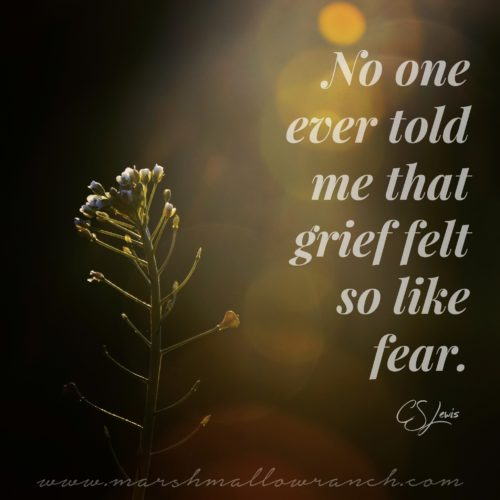 No one told me that grief felt so like fear. CS Lewis