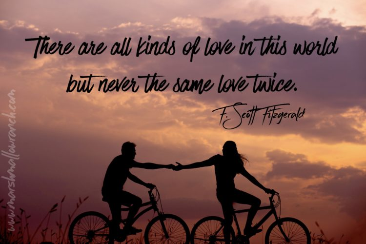 There is all kinds of love in the world but never the same love twice.