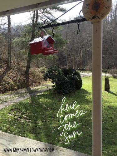Bird feeder on the porch in the spring sunshine