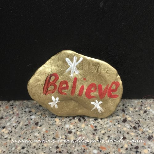 Painted rock...believe!