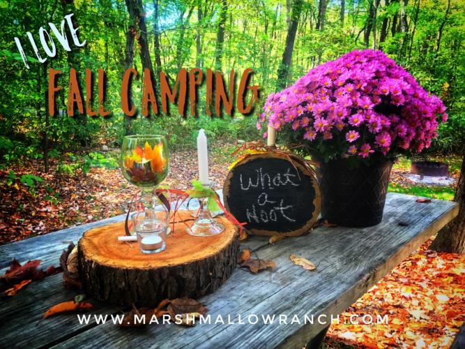 Fall camping decorations