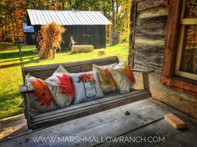 Porch swing and pillows in the fall