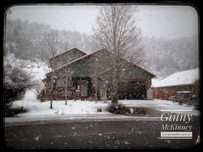 House in snowstorm